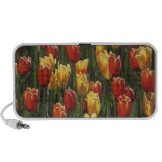 Tulips Notebook Speaker
