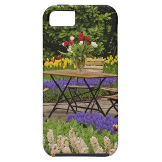 Tulips of table in garden, Keukenhof Gardens, iPhone 5 Cover