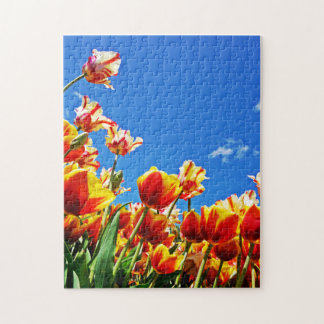 Tulips On A Sunny Day Jigsaw Puzzle