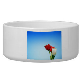 Tulips on Blue Background Dog Water Bowl
