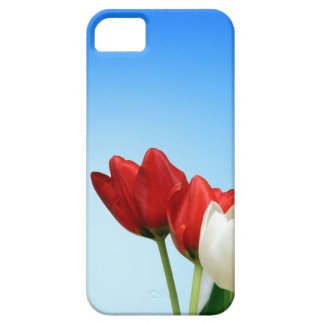 Tulips on Blue Background iPhone SE/5/5s Case