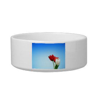 Tulips on Blue Background Pet Bowl