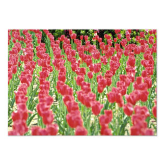 Tulips Pink flowers 5x7 Paper Invitation Card