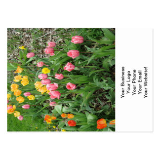 Tulips Pink Yellow Business Card Templates