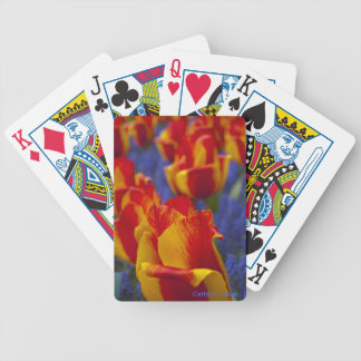 """""""Tulips"""" Playing Cards"""