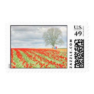 Tulips- red in HDR Postage Stamp