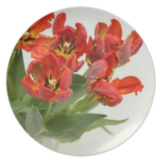Tulips red melamine plate