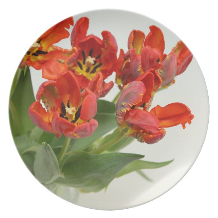 Tulips red melamine plate