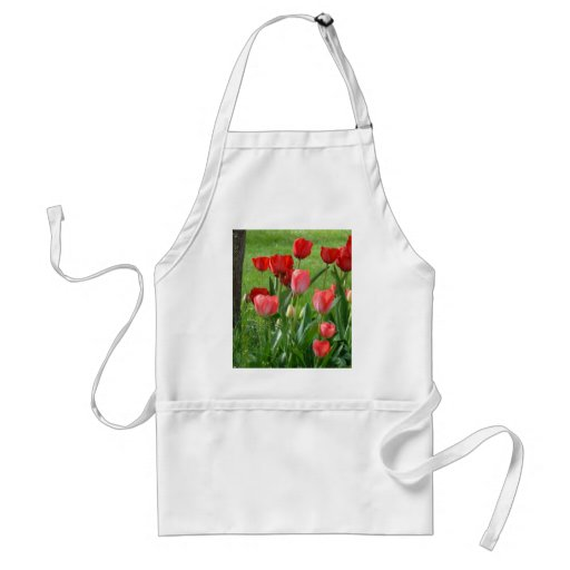 TULIPS RED TULIP FLOWERS 32 Cards Art Gifts Adult Apron