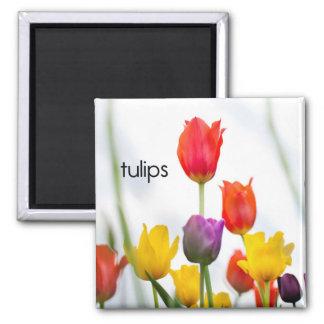Tulips Refrigerator Magnet