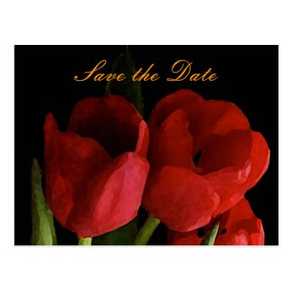 Tulips Save the Date Post Card