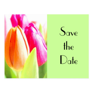 Tulips Save the date Postcard