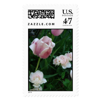 tulips stamp