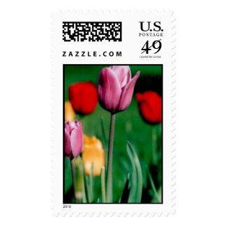 Tulips Stamp