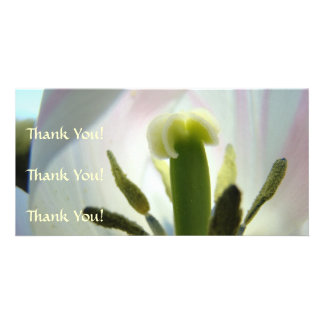 Tulips Thank You Card Thank You Photocard Thanks Photo Greeting Card
