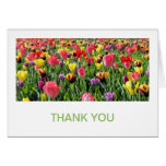 Tulips Thank You Cards
