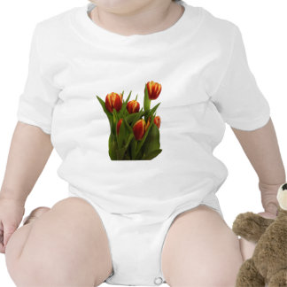 Tulips The MUSEUM Zazzle Baby Creeper