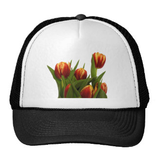 Tulips The MUSEUM Zazzle Hats
