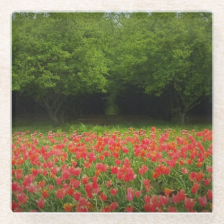 Tulips & Trees Glass Coaster