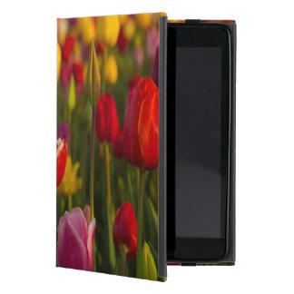 Tulips, Tulip Festival, Woodburn, Oregon, USA 2 Cover For iPad Mini