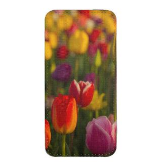 Tulips, Tulip Festival, Woodburn, Oregon, USA 2 iPhone SE/5/5s/5c Pouch