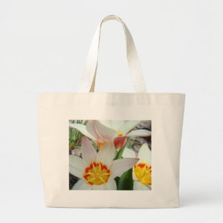 TULIPS White TULIP FLOWERS 6 Cards Art Gifts Canvas Bags