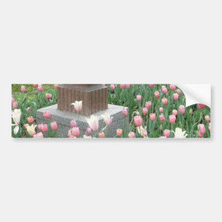 Tulips with Fruit Bowl Sculpture Bumper Stickers