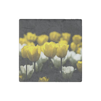 Tulips Yellow And White Stone Magnet