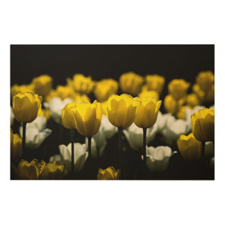 Tulips Yellow And White Wood Wall Decor