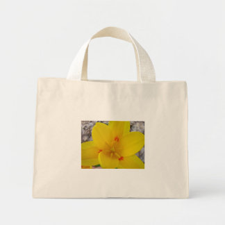 TULIPS Yellow TULIP FLOWERS 2 Cards Art Gifts Tote Bags