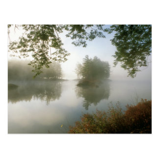 Tully Lake Autumn Morning Fog Postcard