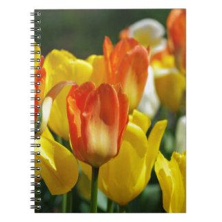 Tulpen Garten Spiral Notizbücher