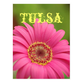 """""""Tulsa"""" Pink Gerbera Daisy Postcard"""