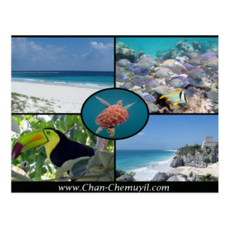 Tulum Vacation Rentals - Chan Chemuyil Post Card