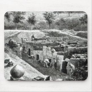 Tumbas de Etruscan Tapetes De Ratones