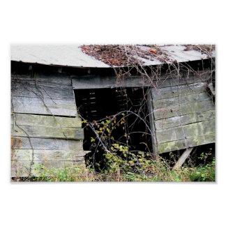 Tumble Down Farm Shed With Fallen Roof Print