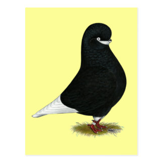 Tumbler:  LFCL Beard Postcard