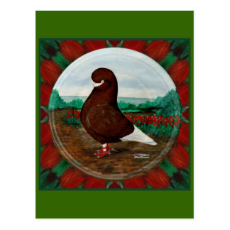 Tumbler Red Beard Postcard