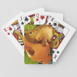 """Tumbleweed &amp; Mr. Fox Playing Cards<br><div class=""""desc"""">Steal the show with this cute deck of cards.</div>"""