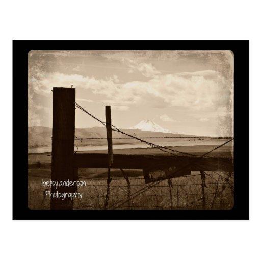 Tumbleweed : Postcard