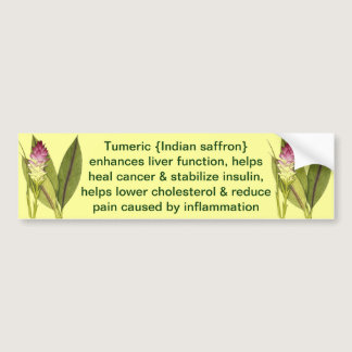 Tumeric bumper sticker