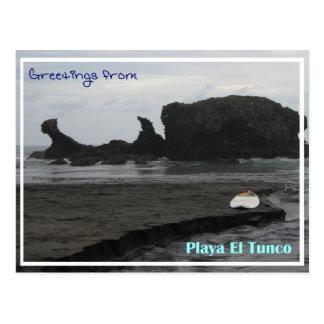 Tunco Postcard - Black Beauty