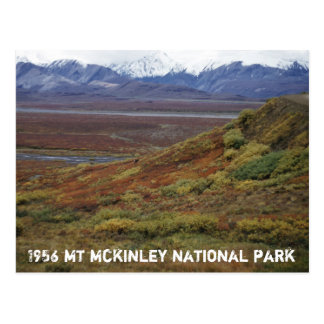 Tundra del caribú que da vuelta a TA roja McKinley Postales