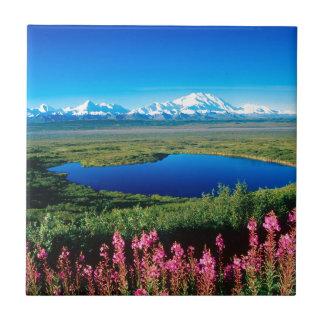 Tundra el monte McKinley Denali Alaska de la escen Azulejo Ceramica