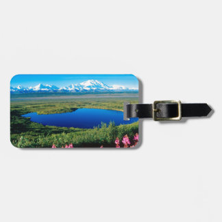 Tundra el monte McKinley Denali Alaska de la escen Etiquetas Bolsa