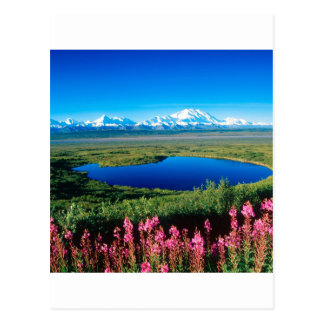 Tundra el monte McKinley Denali Alaska de la Postal