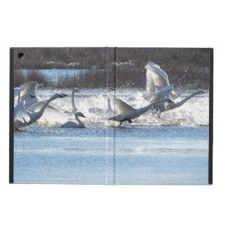 Tundra Swan Bird Wildlife Animals iPad Air Case