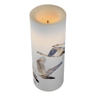 Tundra Swan Birds Flying Wildlife Animals Flameless Candle