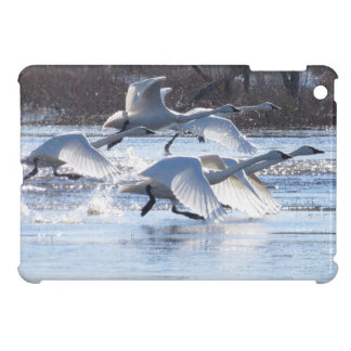 Tundra Swan Birds Wildlife Animals iPad Mini Case