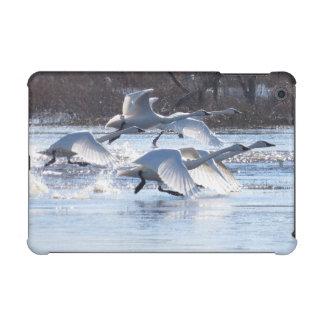 Tundra Swan Birds Wildlife Animals iPad Mini Retina Case